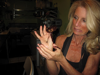 Kelly Childs fighting with Chocolate Ganache