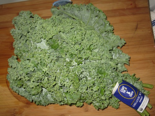 A bunch of Kale that Kelly Childs recently picked up at the grocery store