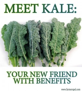 Kale is your new friend with benefits!