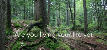 Kelly Childs - Are you living your life yet