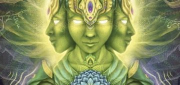 Ayahuasca | Kelly Childs